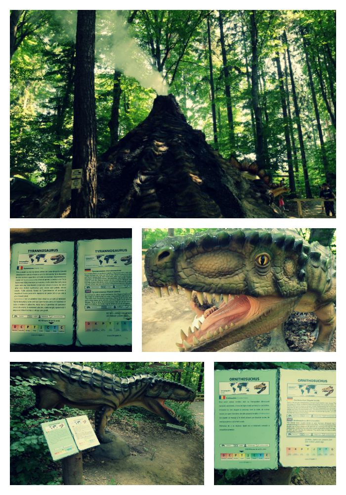 dino parc rasnov 1 Collage