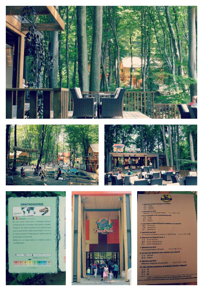 dino parc rasnov Collage