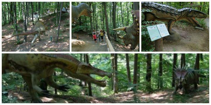 dino parc rasnov scenografie 2 Collage
